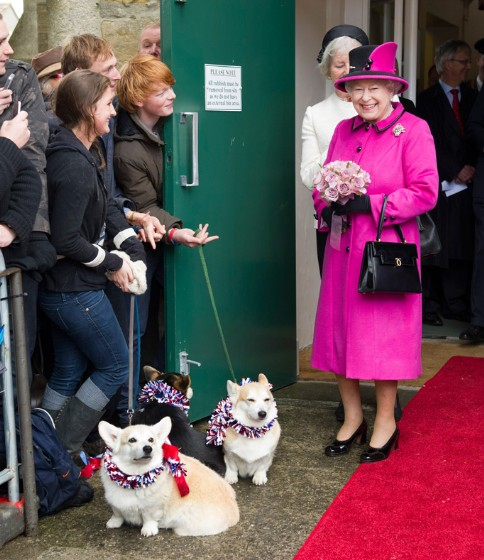 Queen-Elizabeth-Corgis-Dorgis-Royal-Family-11072013-05-484x560